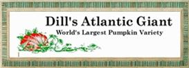 dills logo