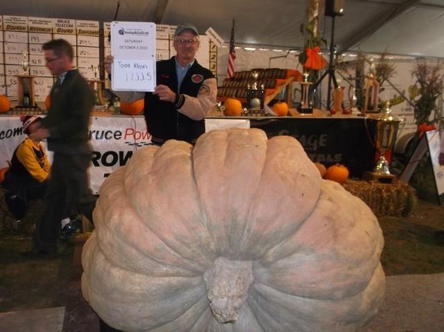 Todd Kline Pumpkin